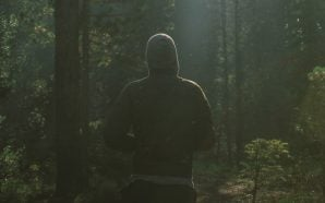 Don't Forget That Forest Jogging is the Best Stress Relief